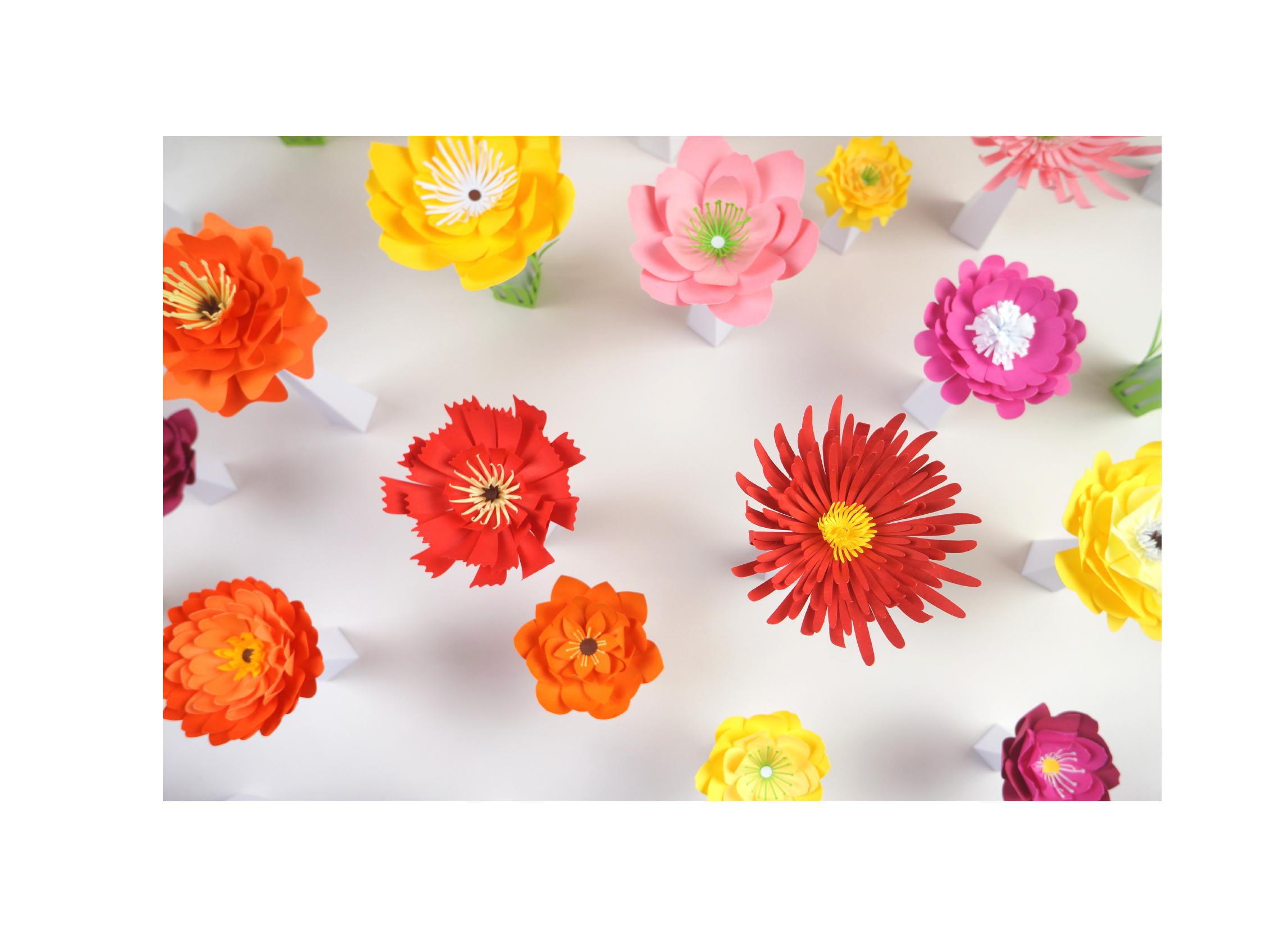 printemps vitrine santa rosa paper art