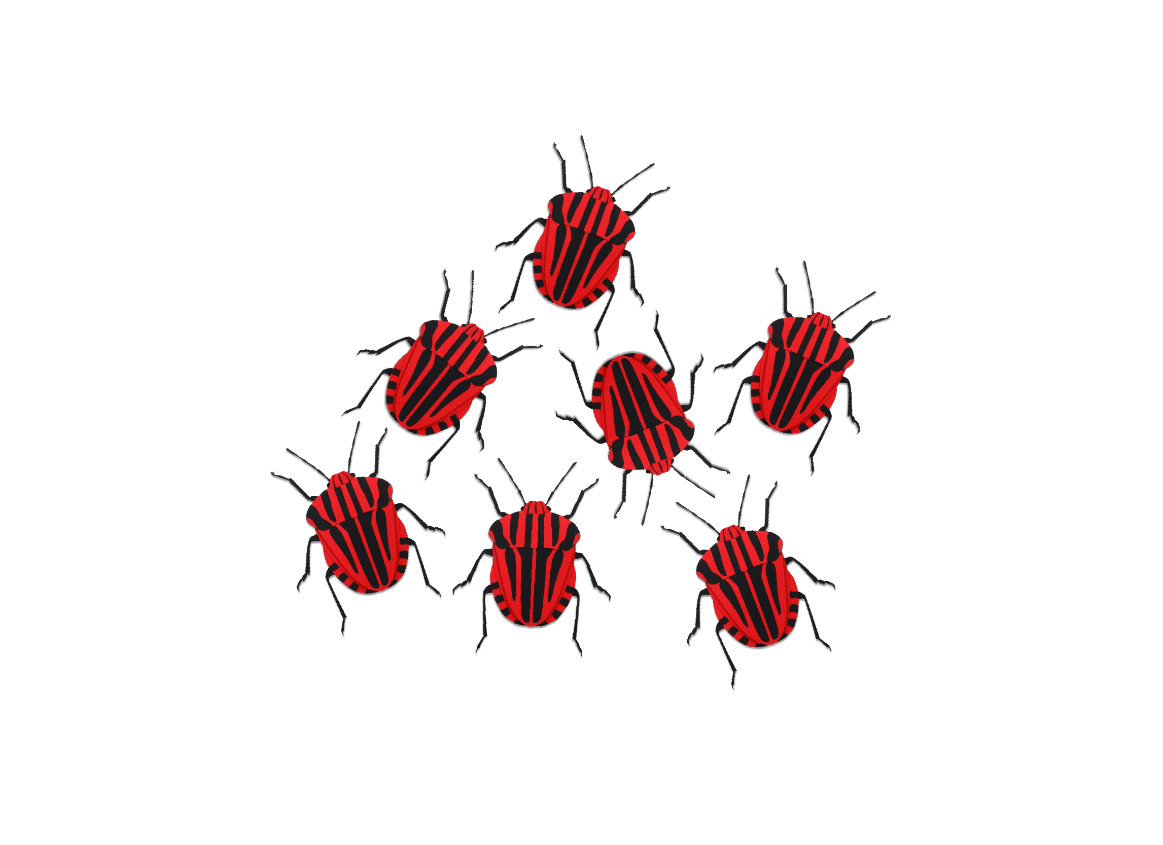coleoptera paper art insecte