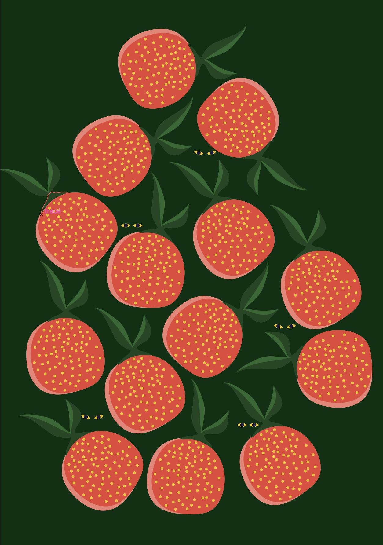 Carte de voeux – Santa Rosa